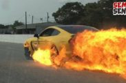 Ford Mustang Shelby GT350R Terbakar